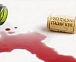 esportazione vino
